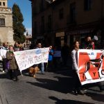 Un domingo de carnaval contra el maltrato animal en Toledo