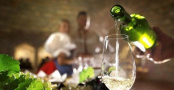 La Diputación de Toledo promueve una cata de vinos dirigida por mujeres bodegueras