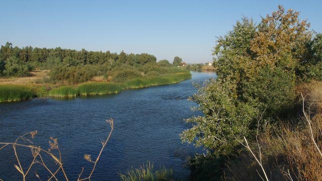 rio-Tajo-paso-Talavera-MAGRAMA_EDIIMA20151029_0507_5