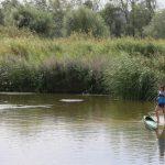 Un congreso abordará la situación del agua en la provincia de Toledo