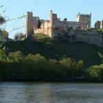 """El estado del Alberche pone """"en riesgo"""" el abastecimiento de Toledo, Talavera y la Sagra"""