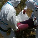 La CHT inicia la retirada de los restos de amianto en Toledo