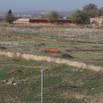 """Proponen arqueología """"no invasiva"""" para Vega Baja antes de decisiones urbanísticas"""