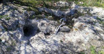 Analizan nuevos residuos en el arroyo de Ramabujas para descartar la presencia de amianto