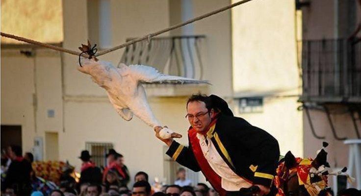 Piden abolir una fiesta en la que se arranca la cabeza a varios gansos