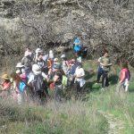 La Diputación oferta 42 paseos naturales por parajes toledanos