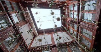336 patios de Toledo desde el objetivo de Renata Takkenberg-Krohn