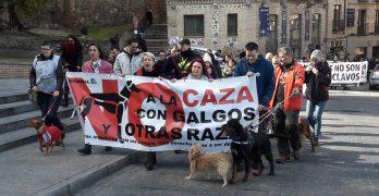 Toledo se suma al clamor nacional contra la caza