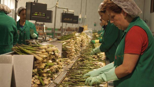 Toledo se suma a un proyecto europeo para mujeres emprendedoras