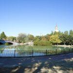 El Ayuntamiento de Talavera repondrá los 200 árboles talados durante la anterior legislatura