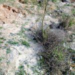 """Denuncian nuevos restos de amianto """"a 30 metros"""" de las casas en el Polígono de Toledo"""