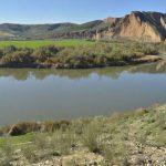 """La pérdida de aves acuáticas es otro indicador de que el Tajo es """"un río enfermo"""""""
