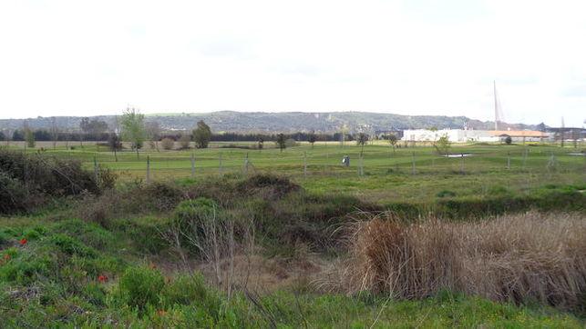 Palomarejos-Golf_EDIIMA20170322_0870_19