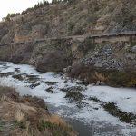 IMÁGENES | El Tajo, de nuevo cubierto de espuma en Toledo
