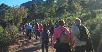 El programa de paseos naturales de la Diputación de Toledo dobla la participación
