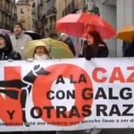 VÍDEO | Protesta en Toledo contra la caza con perros