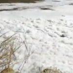 VÍDEO | Gruesas espumas cubren el río Tajo a su paso por Toledo