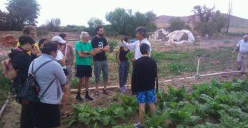 Un consumo más sostenible, sano y organizado es posible: la experiencia del grupo 'Caracoles'