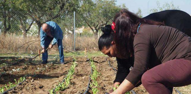 El proyecto 'Cultivando capacidades' de Ajofrín, galardonado en los Premios del Trabajo Social de 2018