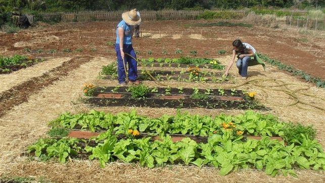 """""""Tenemos que cambiar la tendencia para que los jóvenes vean en la agricultura una forma de vida"""""""