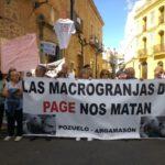 """""""Los cerdos al Congreso"""": centenares se manifiestan contra las macrogranjas en el Día de la Región"""