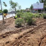 """El """"pequeño pulmón verde"""" en el toledano barrio de Santa Bárbara"""