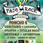 """Vuelve el 'Tajo Rock', un festival para luchar contra """"la agonía"""" del rio"""