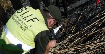 Detenido el presunto responsable de varios incendios forestales alrededor de Talavera de la Reina