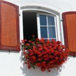 Aprovechan las ventanas abiertas para robar en 7 viviendas de Argés de madrugada
