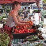 Agricultura pide opinión sobre la futura Ley del Estatuto de la Mujer Rural de Castilla-La Mancha