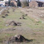 La Junta ya dispone del anteproyecto de la senda entre el Tajo, Vega Baja y el Poblado Obrero