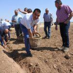'Bioazafrán', la nueva cooperativa de azafrán ecológico de Villafranca de los Caballeros