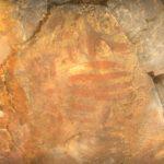 Redescubriendo la edad de Bronce en Los Yébenes con las pinturas rupestres que esperan musealizar