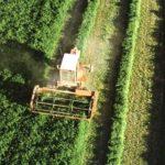 Agricultores y ganaderos de Castilla-La Mancha recibirán las ayudas directas de la PAC desde este martes