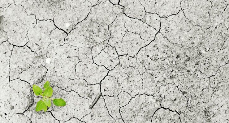 ¿Sí, pero no?: así perciben los castellano-manchegos el cambio climático y sus efectos