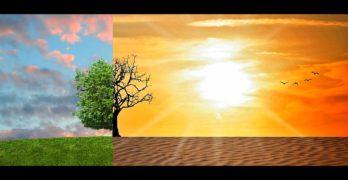 Acciones palanca contra el cambio climático
