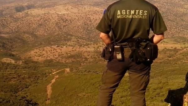 Rescatan a un hombre de 60 años que se había perdido en los pinares de Navalcán buscando níscalos