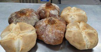 La ruta del buen pan en Castilla-La Mancha: De Jadraque a Villamalea pasando por Toledo (Benipan) y Tomelloso