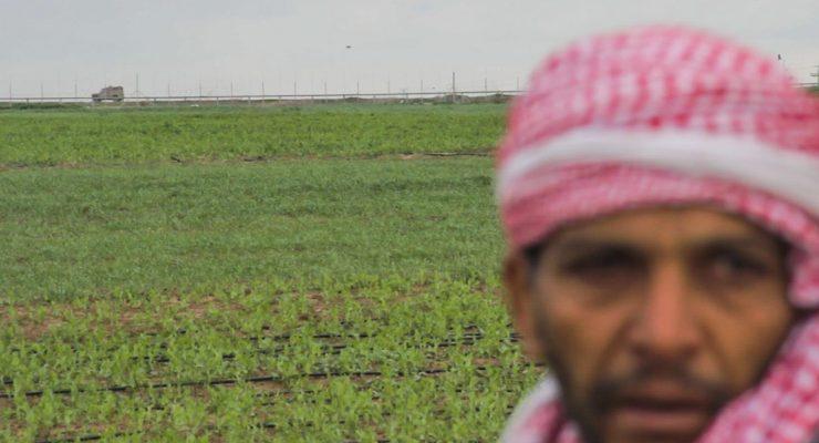 La opresión al pueblo palestino alcanza los Goya con la preselección del cortometraje 'Gaza'