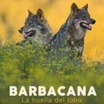 'Barbacana, la huella del lobo', del talaverano Arturo Menor, obtiene 9 candidaturas a los Premios Goya