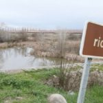 Desde el Tajo hasta las macrogranjas: Castilla-La Mancha en el Parlamento Europeo