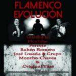 Toledo acogerá el 9 de febrero el Festival Flamenco Evolución