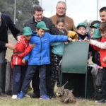 14 nuevos ejemplares de lince ibérico para la zona de reintroducción de Castilla-La Mancha
