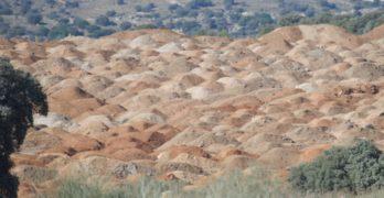 Puy du Fou da 'limosnas verdes' en Francia para lavar sus tropelías ecológicas en España