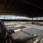 Reabren los parques y yacimientos arqueológicos de Castilla-La Mancha con visitas gratis hasta el 31 de mayo