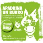 Cervezas La Sagra destinará parte de las ventas de 'Burro de Sancho' a la protección de este animal