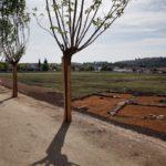 """Desde agosto se podrá disfrutar de la senda peatonal de Vega Baja, un enclave en el que """"hay que hacer muy poquito"""""""