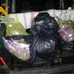 Sorprenden a un hombre en Illescas con 19 kilos de marihuana envasada al vacío que intentó darse a la fuga