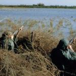 """Denuncian intereses """"espurios"""" en la propuesta para que los cazadores vigilen la fauna cinegética"""
