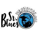 El Sr. Blues Festival regresa al Parque de los Alcázares con artistas como Richard Ray Farre o Virginia Maestro